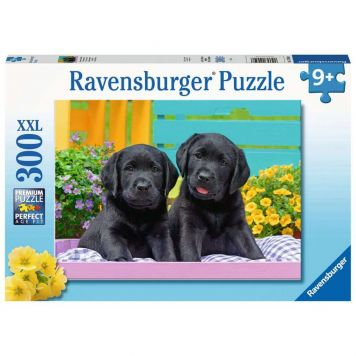 Puzzel Schattige Puppies 300 Stukjes